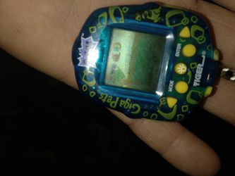 Giga Pet for Sale in Girardville,  PA