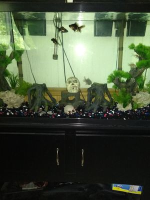 75 Gallon Fish Tank with stand and all included for Sale in Peoria, IL