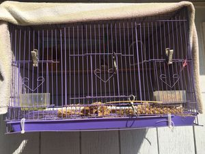 Birdcage for Sale in Corona, CA