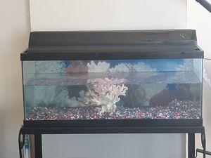 20 Gallon Fish Tank Aquarium Terrarium with Stand for Sale in Chicago, IL