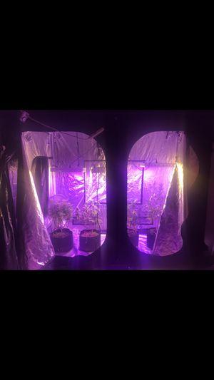Grow equipment for Sale in Longmont, CO