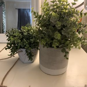 2 Fake Plants for Sale in Los Angeles, CA