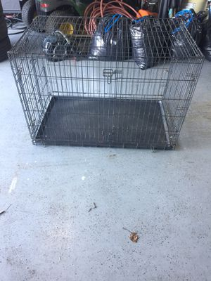 XL dog crate for Sale in Queen Anne, MD