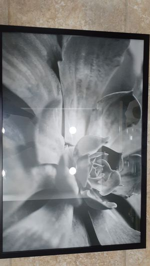 Picture frames for Sale in San Antonio, TX