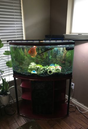 45 gallon Bow Front Tank with stand and new filter for Sale in Olympia, WA