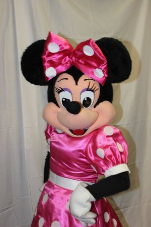 Minnie Mouse adult mascot costume for Sale in Atlanta, GA