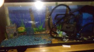 Fish tank and good had 3 months fiter and so m e extra things for Sale in Boston, MA