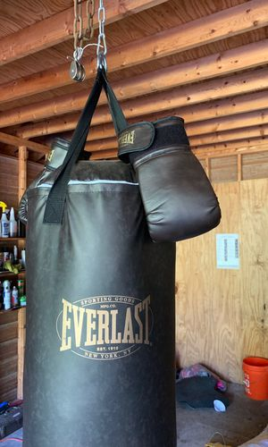 Punching bag and gloves for Sale in Roswell, GA