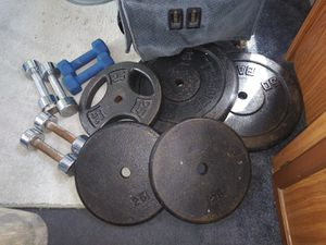 Weights 2x50s 3x25s and dumbbells. Make me an offer for Sale in Tarpon Springs, FL