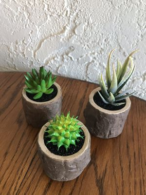Brand new mini faux succulents for Sale in Torrance, CA