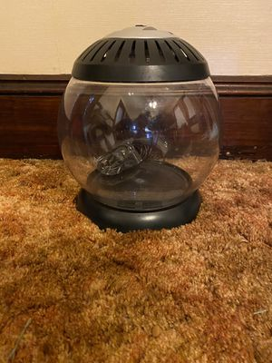 Betta tank with dome light for Sale in Wakefield, MA