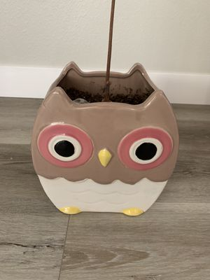Owl Pot for Sale in San Diego, CA