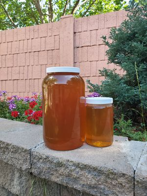 Honey for Sale in West Sacramento, CA