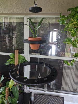 Plant propagation station for Sale in Alafaya, FL