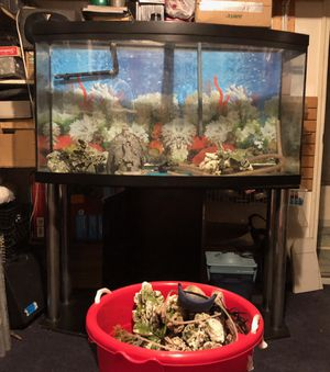 60 Gallon Fish Tank with stand and accessories for Sale in Los Angeles, CA
