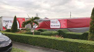 Termites tenting fumigation for Sale in Miami, FL