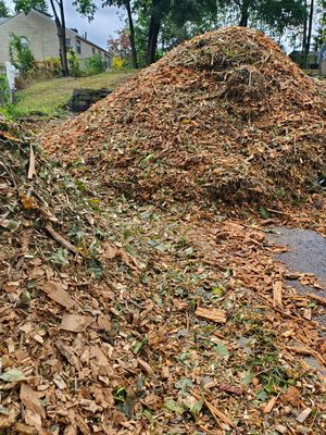 Wood chips for Sale in Hartford, CT