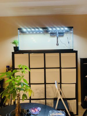 55 gallon aquarium NEW with supplies for Sale in HILLTOP MALL, CA
