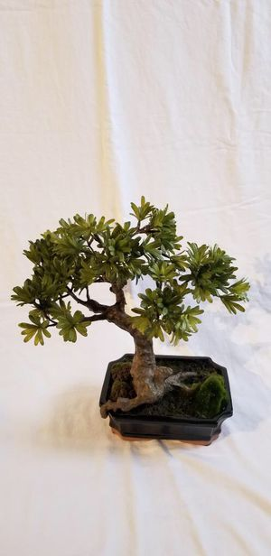 "Artificial Bonsai Tree 14"" for Sale in Hialeah, FL"