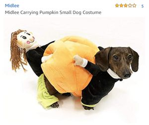 Pumpkin dog costume for small dog for Sale in La Mesa, CA