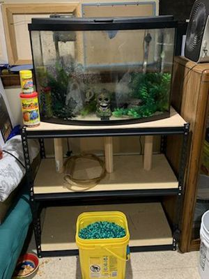 36 gal Bow Front Fish Tank with Stand for Sale in Meriden, CT