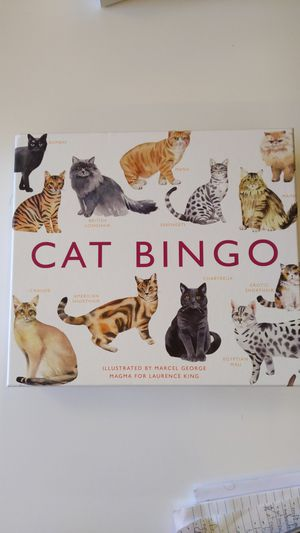 Cat Bingo for Sale in Longmont, CO