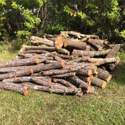 Free Firewood Fresh Cut Oak And Pine Trees for Sale in Port Charlotte,  FL