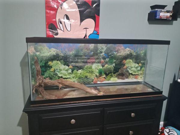 Fish tank 55 gallons 80 dlls OBO (just south carolina).