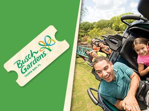 4 Busch gardens tickets for Sale in Fort Myers, FL