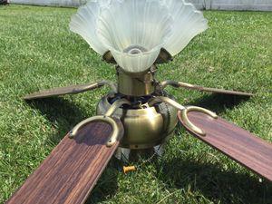 Fan with lamp for Sale in Bridgewater, VA