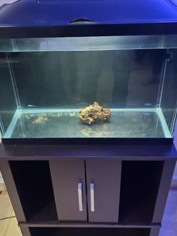 Fish Tank 20 Gallons with nice stand for Sale in Tampa,  FL