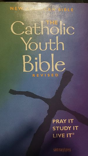 Book The Catholic Youth Bible for Sale in Gardena, CA