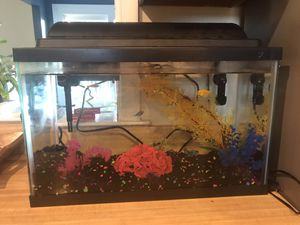 10 gallon fish tank with LED lights for Sale in Ijamsville, MD
