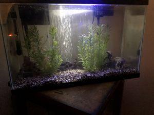 Fish tank for Sale in Lodi, CA