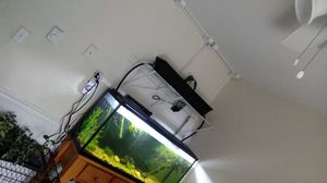 Fish tank, Aquaponics, and more for Sale in Brunswick, MD