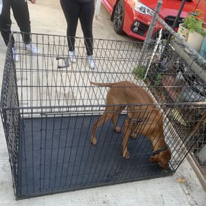 Dog Crate for Sale in Paramount, CA