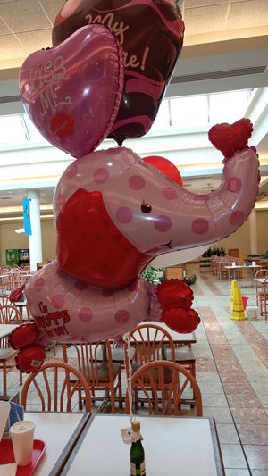 Balloon Bouquets :Butterr UP Bouquets for Sale in Columbus, OH