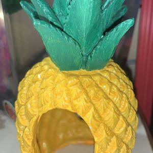BETTA FISH-Pinapple Hide for Sale in Lynn, MA