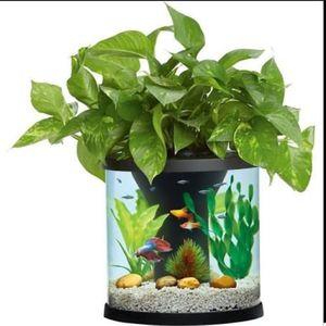 Top fin aquaponics desk aquarium. 3.5 gal for Sale in St. Louis, MO