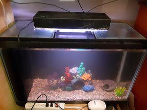 30 Gallon Aquarium/Fish Tank!!! 🐟🐠🐡🐢👍 for Sale in Los Angeles, CA