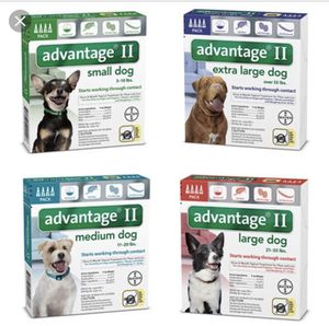 K9 Advantage for Sale in West Seneca, NY