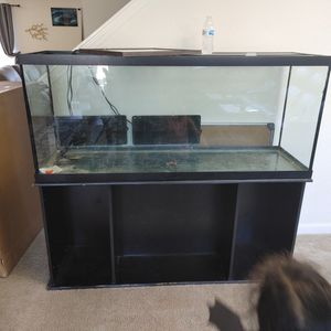 Fish tank / reptile ( need to sell) for Sale in Houston, TX