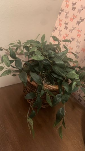 Fake plant for Sale in Murrieta, CA