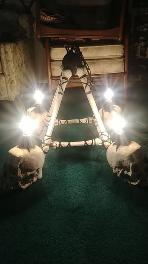 Skull hanging Chandelier for Sale in Los Angeles, CA
