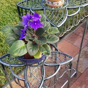 Plant Holder for Sale in Hallandale Beach, FL