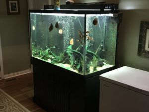 150gal cube tank for Sale in Florence, KY