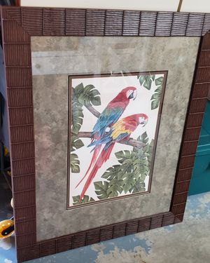 Dianne Krimmel limited edition signed parrot etching for Sale in New Port Richey, FL