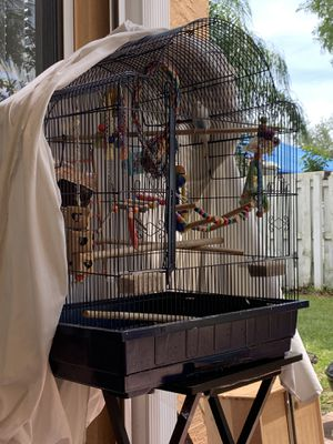 Bird cage with everything included for Sale in Plantation, FL