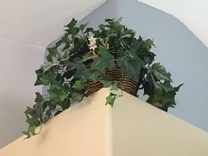 5 Plant baskets (fake) for Sale in North Las Vegas, NV