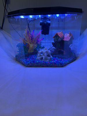 5 gallon fish tank for Sale in Troy, MI